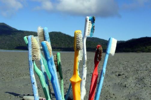 toothbrushesonbeach.jpg